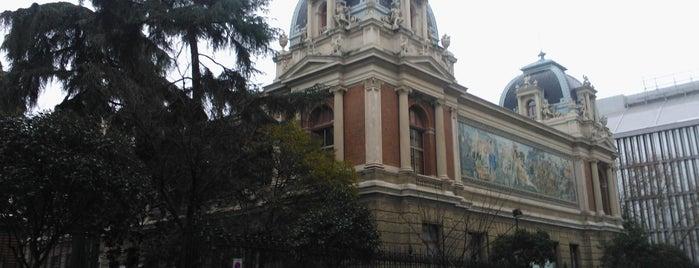 Escuela Técnica Superior de Ingenieros de Minas y Energía de Madrid (ETSIMINAS Y ENERGÍA - UPM) is one of museos por visitar.