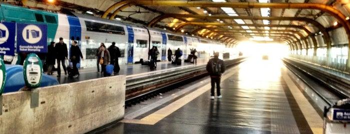 Stazione Fiumicino Aeroporto (ZRR) is one of I consigli pratici.