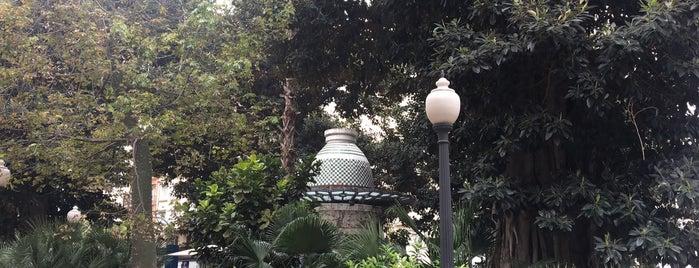 Portal de Elche is one of Alicante (plazas y jardines).