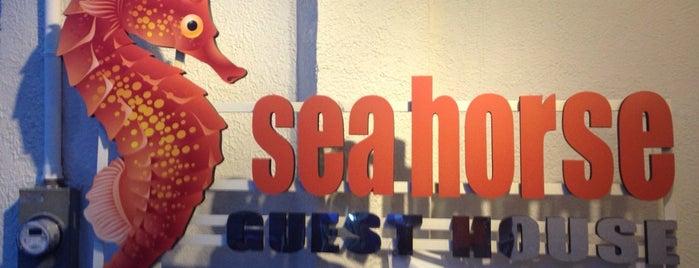 Seahorse Guesthouse is one of Filipinler-Manila ve Palawan Gezilecek Yerler.