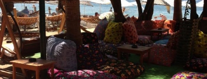 Okaliptus Cafe & Beach is one of Bodrum /TURKEY City Guide.