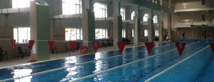 Плавательный бассейн СК Шериф / Swimming pool SC Sheriff is one of мой список.