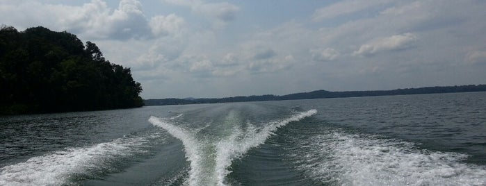 Tellico Lake is one of Favorites.