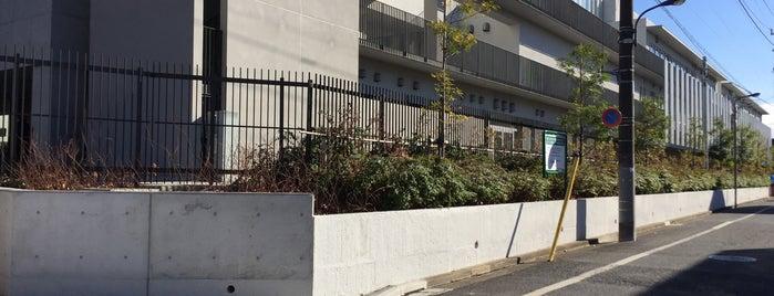 東京都立 練馬工業高等学校 is one of 都立学校.