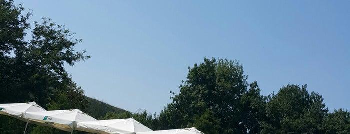 Saklıköy Country Club is one of Istanbul yapilacaklar listem.