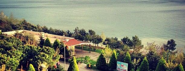 İhlas Armutlu Tatil Köyü is one of yeni yerler.