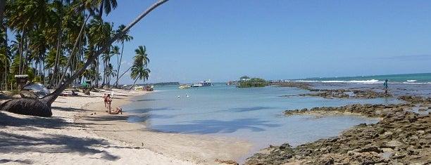 Praia dos Carneiros is one of Nordeste BR.