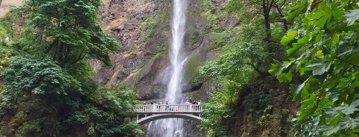 Multnomah Falls is one of Oregon.