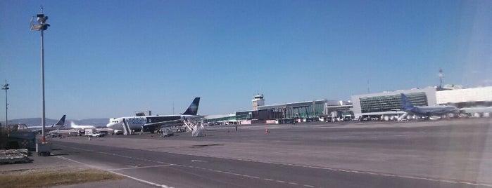 Guadalajara International Airport (GDL) is one of Lugares por ir (o ya fui).
