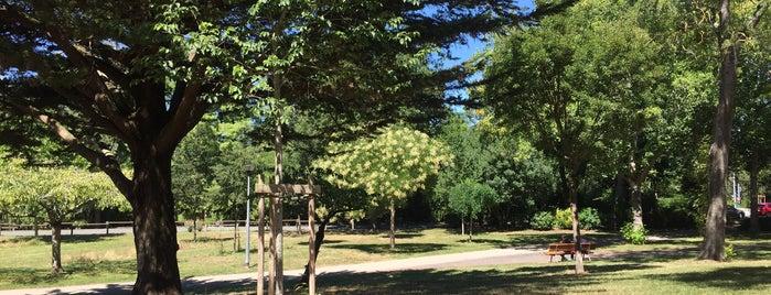 Parc Charruyer is one of Les immanquables de La Rochelle.