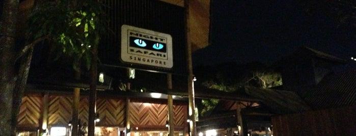 Night Safari is one of Singapur 2dos.