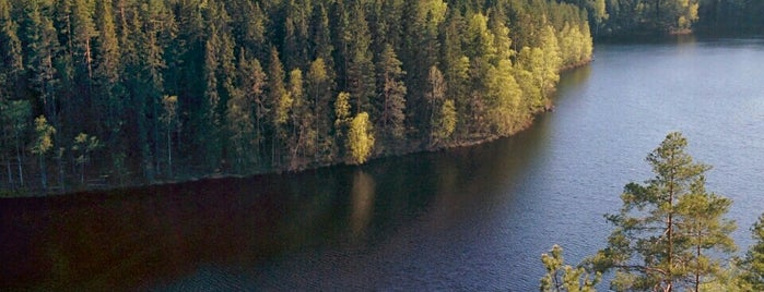 Repovesi National Park is one of Places to visit in Finland.