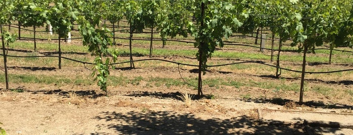 De La Montanya Vineyards is one of Wine Road Picnicking- al Fresco Perfetto!.