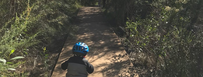 Manly Dam is one of Mountain Biking.