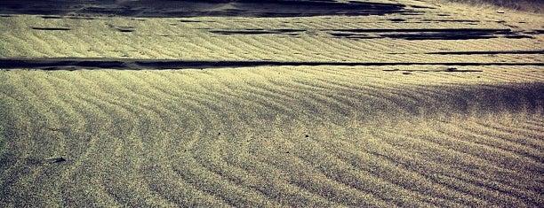 Nakatajima Sand Dune is one of メンバー.