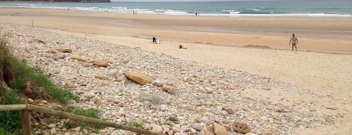 Playa de Oyambre is one of Guía de Cantabria.