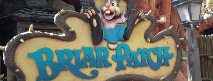 Briar Patch is one of Favorite Places in Florida.