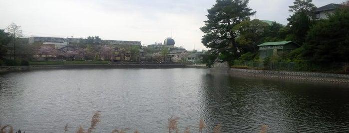 仲ノ池緑地 is one of 公園.