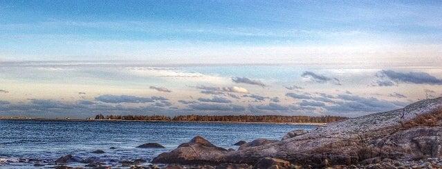 Beach Meadows Beach is one of Halifax to do.