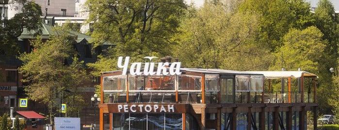 Чайка is one of Рестораны СПб.