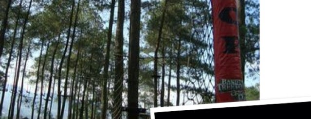 Bandung Treetop Adventure Park is one of My Hometown.