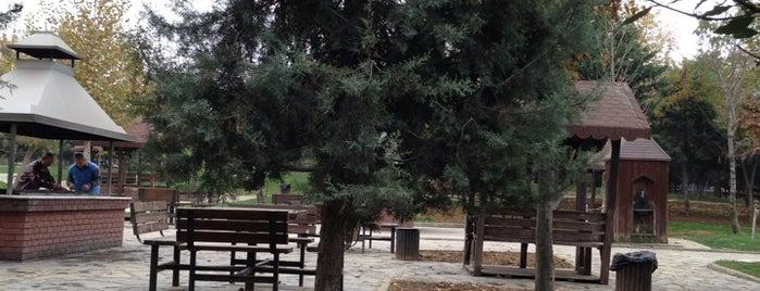 Bahçelievler Şehir Korusu is one of kaydefilenler.
