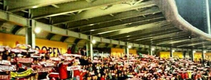 Üniversite Stadyumu is one of AntaLya :)).
