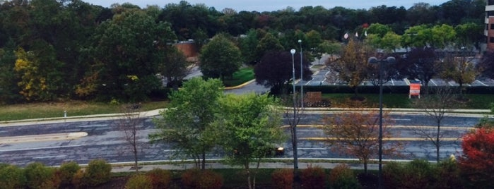 SpringHill Suites by Marriott Annapolis is one of Maryland Green Travel Hotels and Inns.