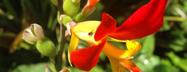 Alice Keck Park Memorial Gardens is one of Travel Guide to Santa Barbara.