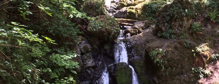 Cataract Falls is one of Favorite Places.