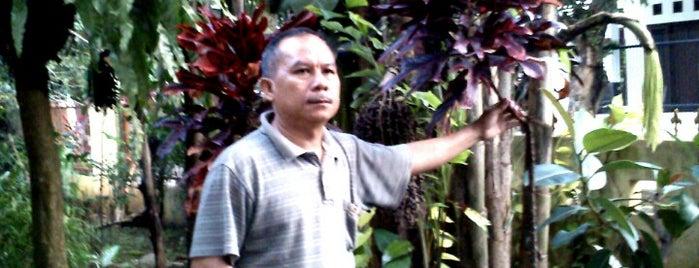 perum PMI blok E 5 No.12A Cilebut Bogor