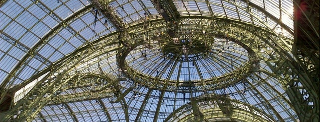 Grand Palais is one of HangOuts x Shops x Sport.