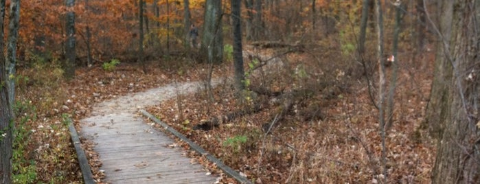 Blacklick Woods Metro Park is one of Columbus Area Parks & Trails.