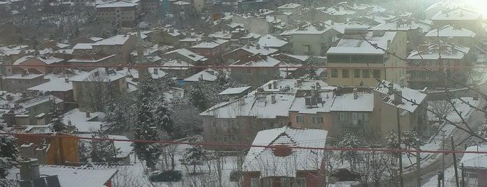 Müderris is one of Kütahya'nın Mahalleleri.