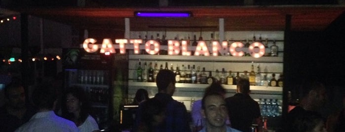 Gatto Blanco is one of Panama.
