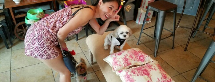 Chateau Le Woof Pet Market & Cafe is one of Our 17 Favorite Pup-Friendly Places.