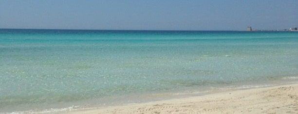 Spiaggia Libera di Torre Lapillo is one of ITALY BEACHES.