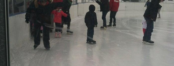 Warren Park Ice Rink is one of Chicago Rat Hockey.