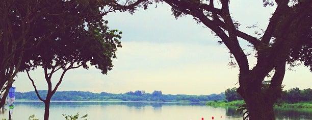 Lower Seletar Reservoir Park is one of Trek Across Singapore.