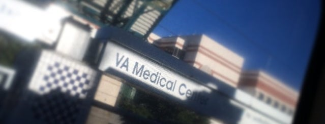VA Medical Center Station (DART Rail) is one of DART Blue Line.