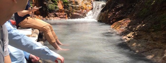 River Oyunuma Natural Footbath is one of 地元観光案内.
