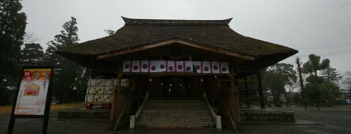 Amatsu shrine/Nunagawa Shrine is one of 訪問済みの城2.