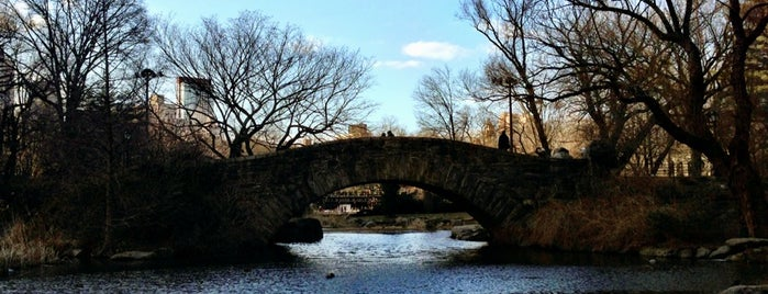 Gapstow Bridge is one of Locations Discovered.