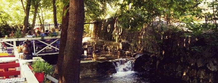 Bizimev restorant&pansiyon is one of تركيا.