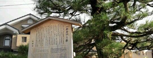 一乗寺下り松 (宮本吉岡決闘之地) is one of 京都.