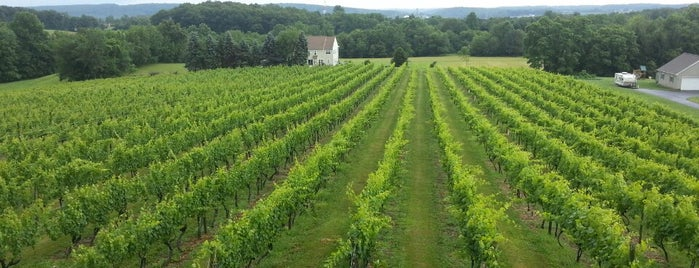 Fiore Winery is one of MD Wineries.