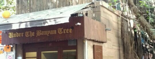 Under The Banyan Tree is one of Favourite quaint joints.