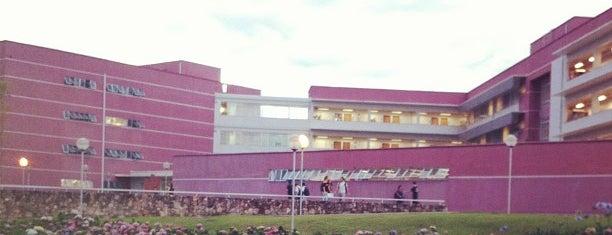 Face - Faculdade de Ciências Econômicas is one of Campus.