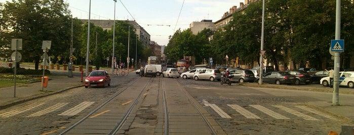Zsigmond tér (17) is one of Budai villamosmegállók.