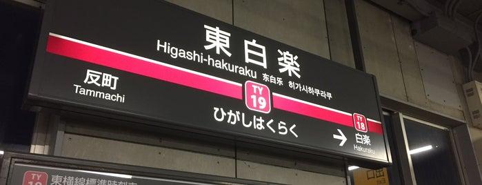 Higashi-hakuraku Station (TY19) is one of Station - 神奈川県.